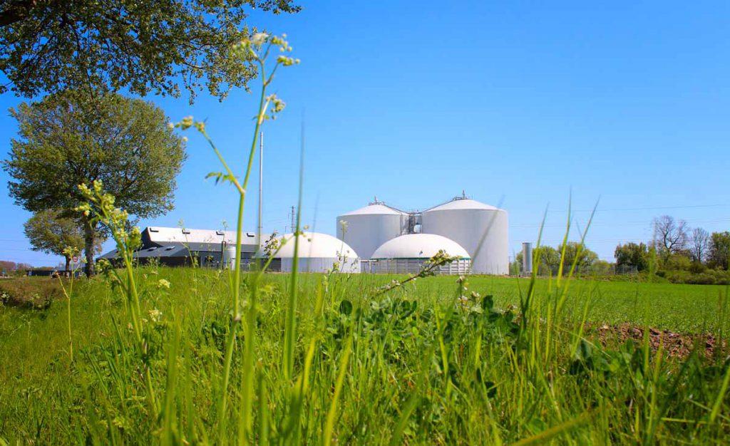 Den rensede biogas leveres via rør til Solrød Fjernvarme , hvor det anvendes til produktion af el og varme.